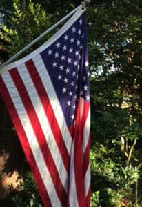 Flag-2014