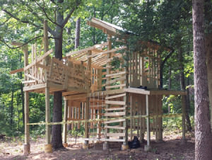 Roper-Mtn-Tree-House-June-2