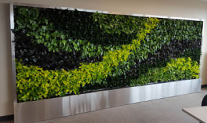 Living-Wall3